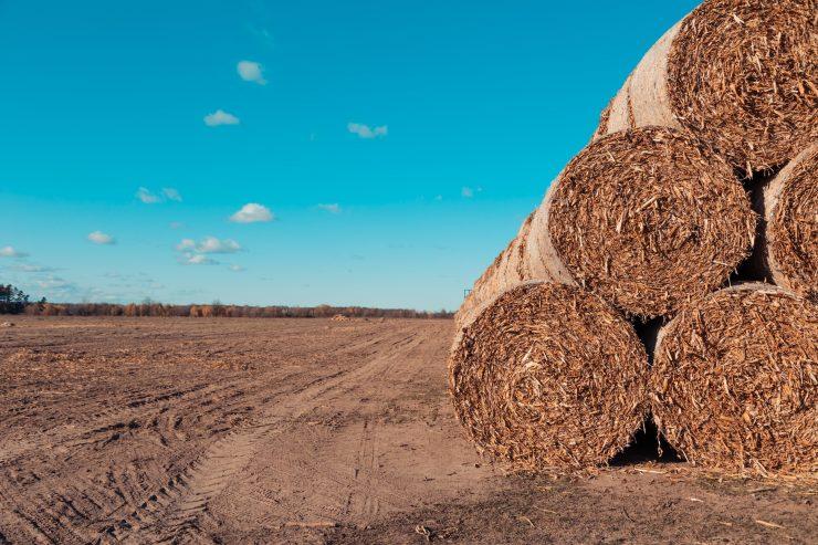 Rodzaje maszyn rolniczych i ich zastosowanie
